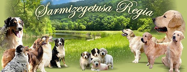 Sarmizegetusa regia.png
