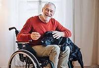 pet-services personnes dépendante 1.jpg
