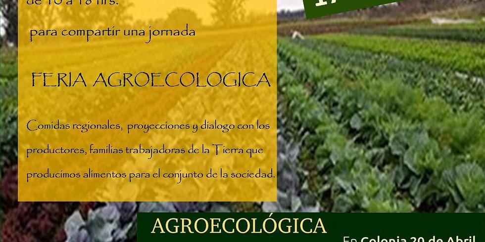 Feria Agroecológica de la UTT