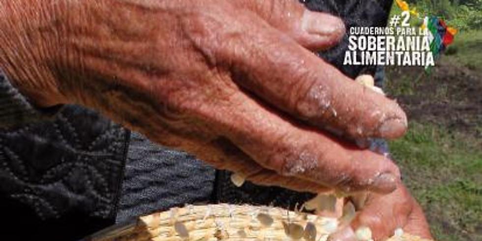 Nueva publicación Calisa Fauba- Calisa Nutrición. Monadanomade