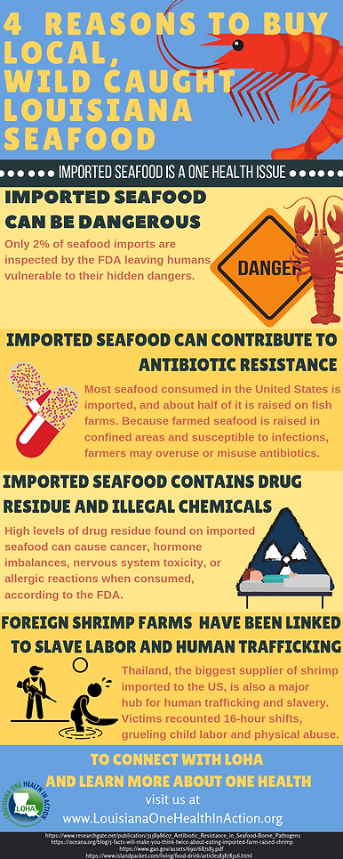 Louisiana Seafood Infographicb.png