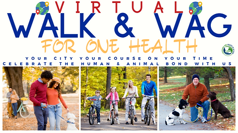 runsignup Event Pic VIRTUAL Walk and Wag