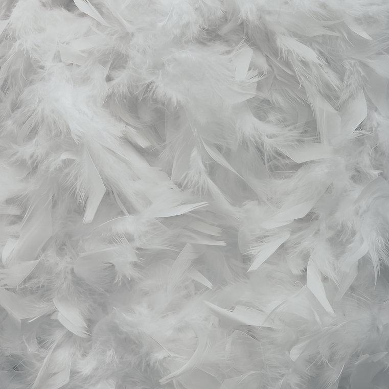 bright-white-feather-texture-flat-lay-mi