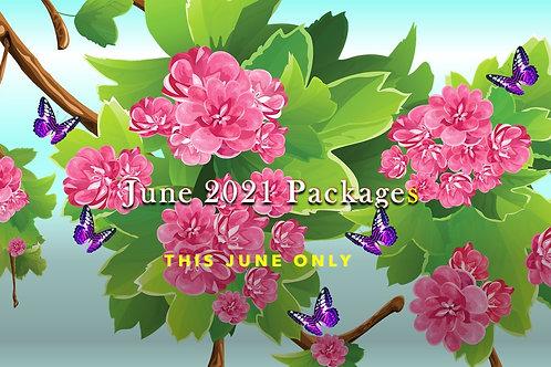 June 2021 Package 2