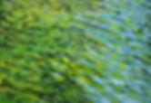 IMG_2878 water.jpg
