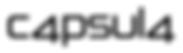 capsula-bag-logo