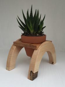 Cresent Succulent Holder