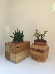 Baby Succulent Holders