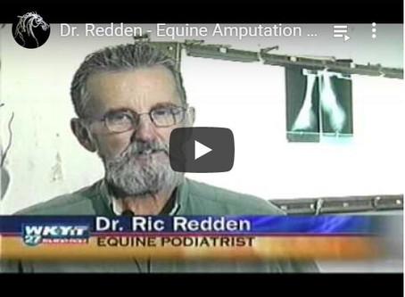 Video coverage of Dr. Redden's Equine Amputation Case