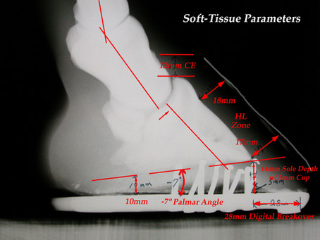 "Using the Radiographic ""Platinum"" Standard to Improve Footcare"