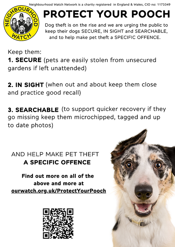 Protect your pooch poster.png
