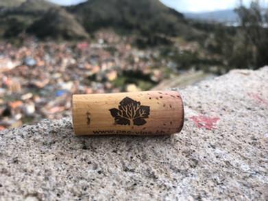 La Titicaca.jpg
