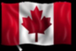 Canadian Flig.png