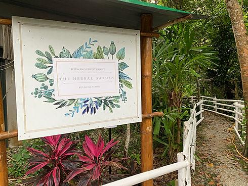 herbal garden 1.jpg