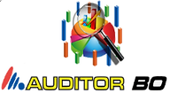 auditorbo.png