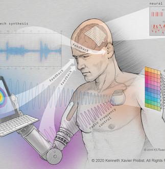 Brain-Machine Interface (BMI) Schema