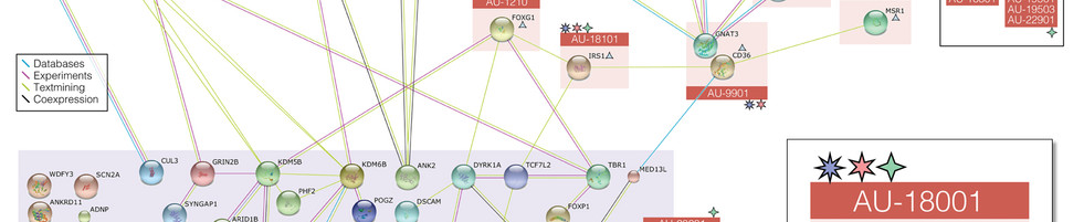 Genetic Study Network Visualization