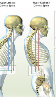 Cervical Spine Alignment Parameters