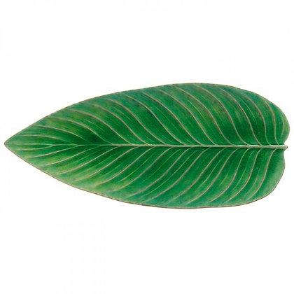 RIVIERA - Strelizia Leaf Tomato