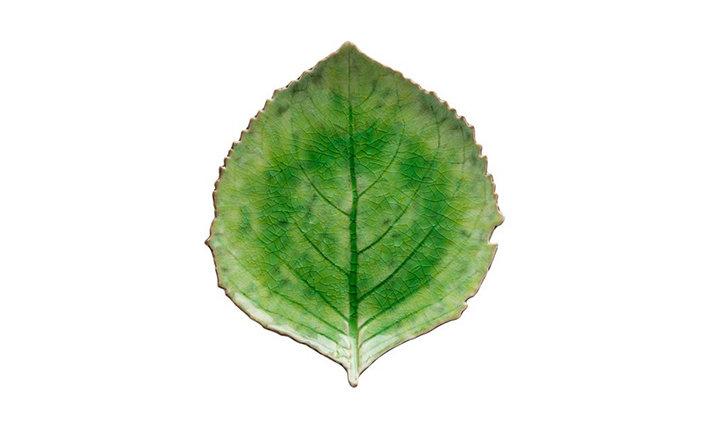 RIVIERA - Hydrangea Leaf Side Plate Tomato