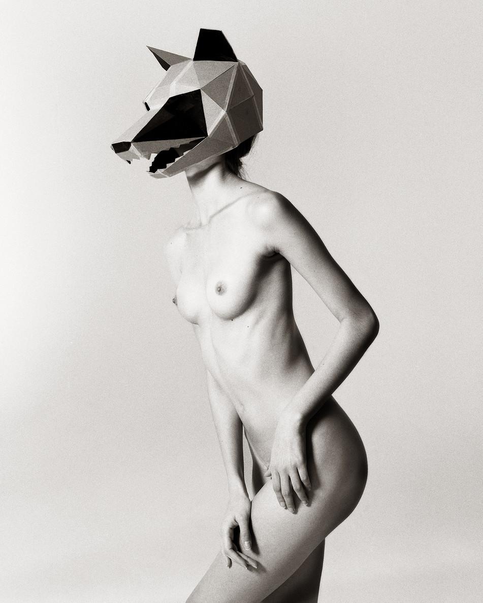 Laissa Wolf Mask II 154.jpg