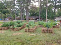 Straw Garden