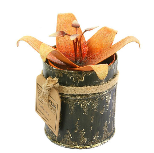 Candle in Distressed Recycled Jar Orange Flower Lily, Kaffir Lime
