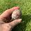 Thumbnail: Lepidolite Polished Freeform