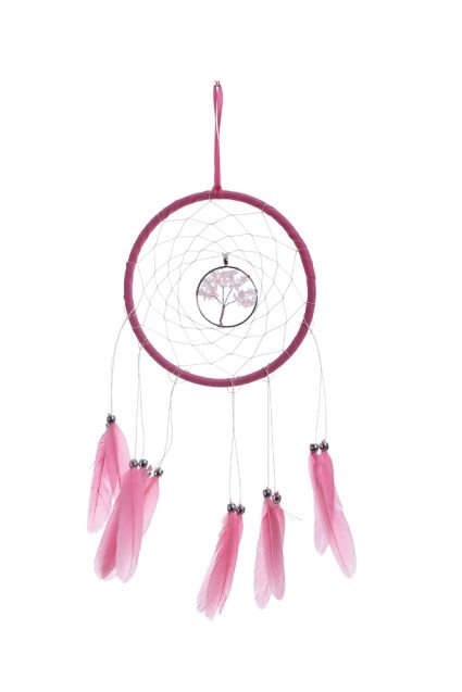 Dream Tree Dreamcatcher WIth Feathers 16cm