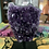 Thumbnail: Amethyst Cluster mounted on Black Stand