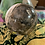 Thumbnail: Rhodonite Sphere
