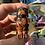 Thumbnail: Dog Carved Crystal