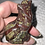 Thumbnail: Dragon Blood Jasper Craved Howling Wolf