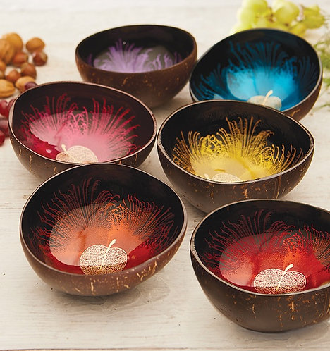 Coconut Bowl with Gold Leaf Design Various Colours