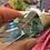 Thumbnail: Blue Obsidian Angled Freeform