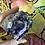 Thumbnail: Rainbow Fluorite Half Polished Point
