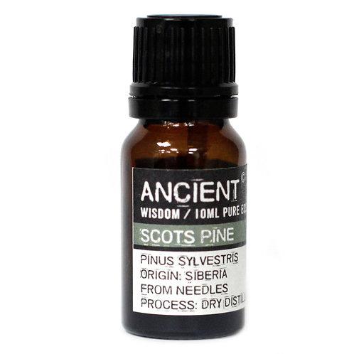 10 ml Pine Sylvestris (Scots Pine) Essential Oil