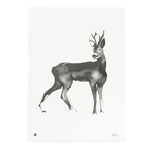 TEEMU JÄRVI - Poster. Hirsch, 50 x 70 cm