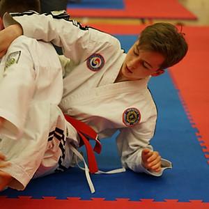 Southend Ju-Jitsu  Competition 2019 Ground Fighting