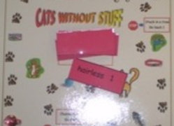 Cat's Without Stuff