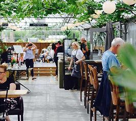 Greenhouse-cafe-Langton.jpg