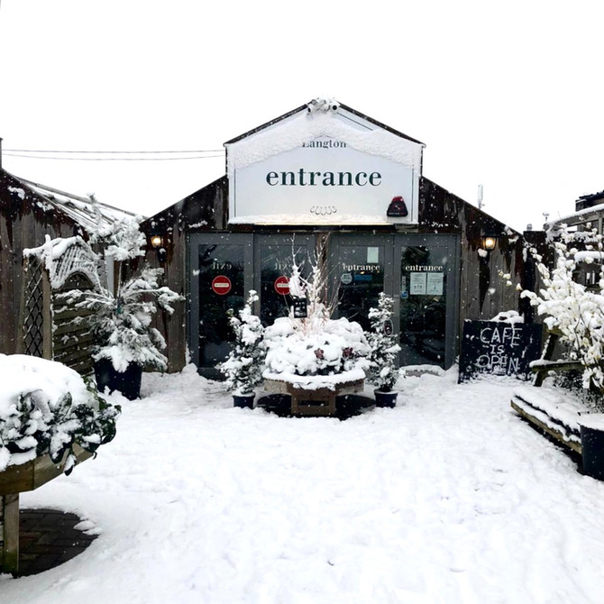 A look at January at The Langton Greenhouse and Garden Centre