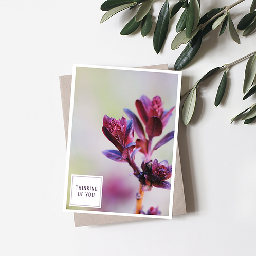Thinking of You Card - Photography Greeting Cards