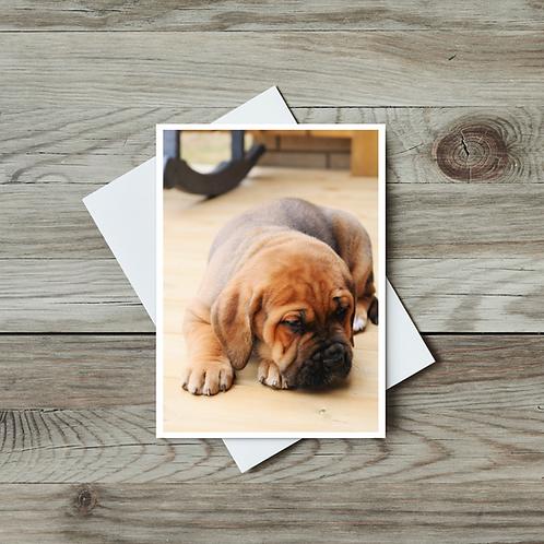 Puppy Card - Dog Lover Notecard