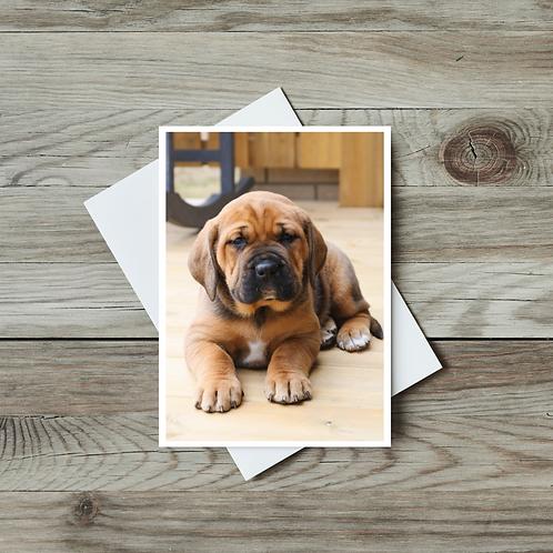 Puppy Greeting Card - Paper Birch Art