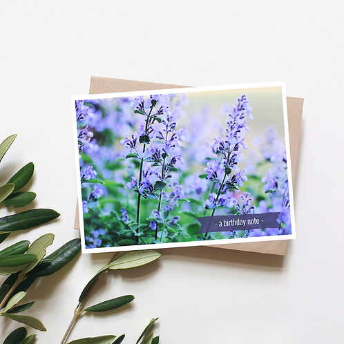 A Birthday Note - Catmint Flower Greeting Card