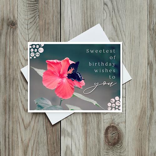 Butterfly Birthday Card - Paper Birch Art