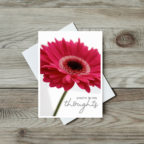You're in My Thoughts Gerbera Daisy Card - Paper Birch Art