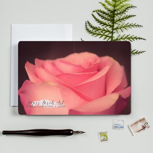 Rose Continuous Photograph Card - Paper Birch Art