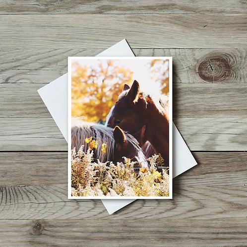 Horses Blank Greeting Card - Paper Birch Art